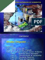Estudios Integrados.ppt