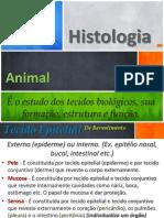 Histologia - P2