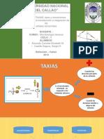 291600773-Exposicion-Taxias-pdf.pdf
