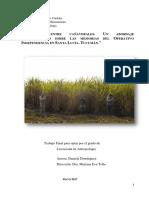 TESIS-Daniela-Dominguez-2017 (1).pdf
