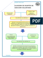 ESQUEMA LEY DE JURISDICCION VOLUNTARIA.docx