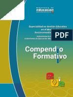 Compendio Especialidad Gestión.pdf