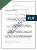 Documento (Comunidades Virtuales)