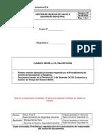 Dc101 Gestion de Riesgos de Salud y Seguridad Industrial 2008
