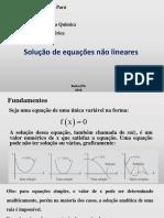 solução equações não lineares.pdf