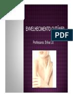 aula-5-envelhecimento-.pdf