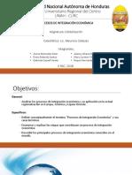 Procesos de Integracion Economica - Investigación