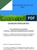 Constitución Políitica Del Perú