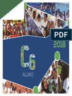 C6_1BIM_ ALUNO_2018.pdf