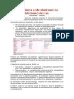 Bioquímica e Metabolismo de Proteínas e Aminoácidos.docx