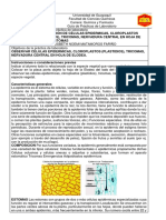 GUIA DE PRACTICA 8.docx