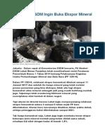 Ini Alasan ESDM Ingin Buka Ekspor Mineral Mentah