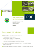 Natural Rubber an Opportunity in Brazil