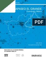 GUA_Apaseo_el_Grande.pdf