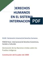 Derechos Humanos en El Sistema Internacional y en La Constitución Ecuatoriana
