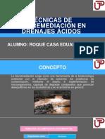 TÉCNICAS DE BIORREMEDIACIÓN EN DRENAJES ÁCIDOS.pptx
