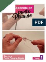 Clase 1 Introducción Al Punto Peruano eBook