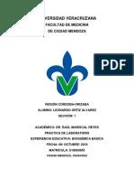 PRACTICA-DE-BIOQUIMICA-DE-LEO.docx