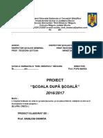 proiect_sds_2016.docx