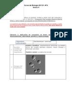 ANEXO 4..pdf