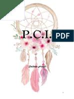 PCI 5° 2019.docx