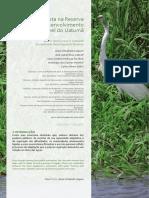 28709-96145-1-PB.pdf