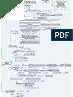 EVOCULICION DEL SERVICIO.cmap.cmap.pdf