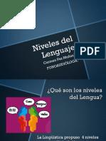 Niveles del Lenguaje.pptx