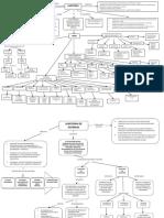 Mapa Conceptual Auditoria