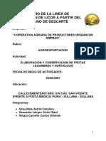 DAP Y DOP.docx