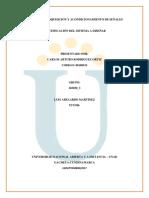 Identificación del sistema a diseñar Carlos Rodriguez.docx
