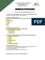Preguntas de fito parcial.docx