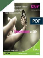 Product Presentation EZELIN 2019.pdf