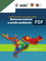 RedALCChina-2017-medioambiente.pdf