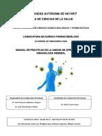 Manual_Practicas_IG_2019.pdf
