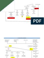patoflow leukemia.docx