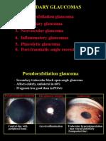 30Secondary Glaucomas