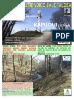 20190331 Kapildui - Cartel