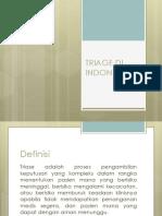 Triage Di Indonesia