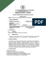 PRÁCTICA N° 5ACTIVIDAD ENZIMÁTICA DE LA CATALASA