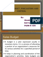 sales budget.pdf