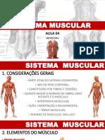 04-sistemamuscular-160916224412