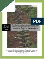 Camilo Gallego (10).pdf