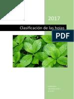 Clasificación de las hojas.docx