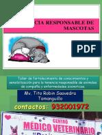 talleres sencivilizacion tenecia res´ponsable de animales de compañia