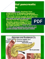Congenital Pancreatic Disorders