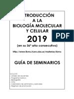 Gui301a-Seminarios-IBMC-2019.pdf