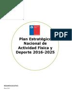 Plan Estratégico Nacional Mindep Resumen