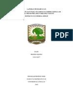 LP CEDERA KEPALA.docx
