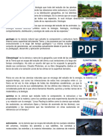 conceptos ciencias  botanica 3ro basico.docx